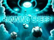 Running Sheep - juego de aventura gratuito en ToomkyGames