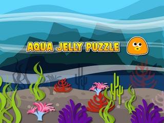 Aqua Jelly Puzzle