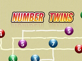 Number Twins